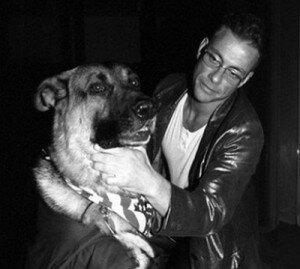 Жан-Клод Ван Дамм и его собаки