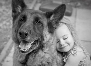 Собака и ребенок: правила общения