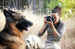 Как правильно фотографировать собак: 10 правил удачного снимка