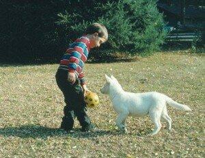 Ребенок боится собаки: как помочь справиться с детским страхом?