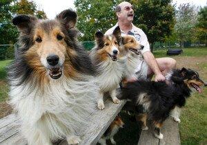 5 признаков хорошего заводчика или у кого же все-таки покупать породистого щенка