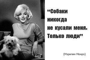 Мэрилин Монро и ее собаки