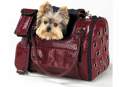 Сумка-переноска для собаки