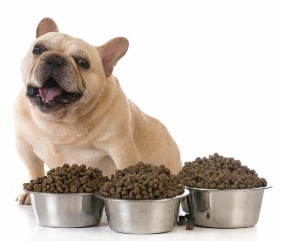 гипоаллергенный корм Люпосан для собак